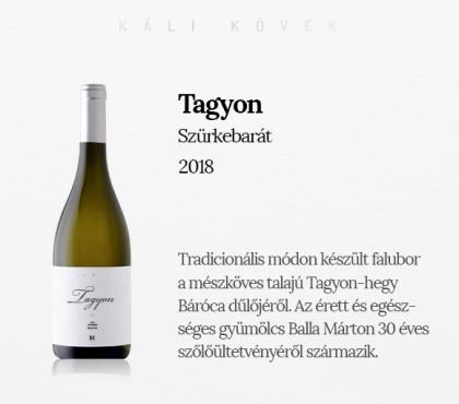 Tagyon